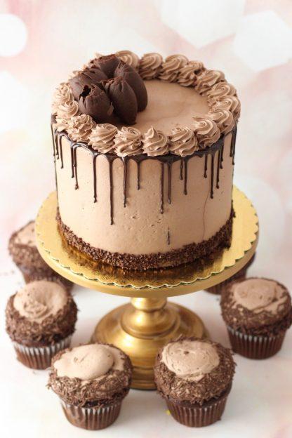 triple chocolate cake with triple chocolate cupcakes